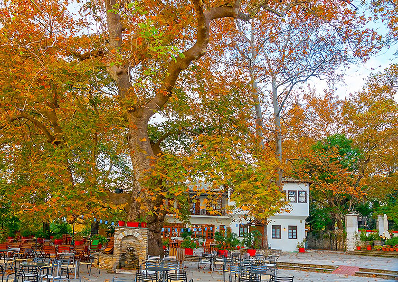 Village square in Pelion